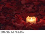 Свеча среди красных лепестков роз. Стоковое фото, фотограф Юрий Прокопьев / Фотобанк Лори