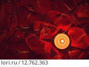 Свеча и лепестки роз. Стоковое фото, фотограф Юрий Прокопьев / Фотобанк Лори