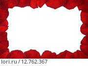 Рамка из красных лепестков роз на белом фоне. Стоковое фото, фотограф Юрий Прокопьев / Фотобанк Лори