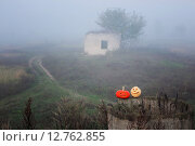 Купить «Halloween pumpkin outdoor», фото № 12762855, снято 22 сентября 2015 г. (c) Майя Крученкова / Фотобанк Лори