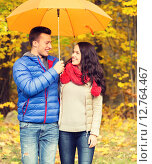 smiling couple with umbrella in autumn park. Стоковое фото, фотограф Syda Productions / Фотобанк Лори