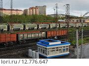 Купить «Грузовые вагоны. Мурманск», фото № 12776647, снято 9 июня 2015 г. (c) Ирина Здаронок / Фотобанк Лори