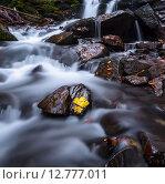 Купить «Бурная горная река в Карпатских горах осенью», фото № 12777011, снято 1 мая 2012 г. (c) Эдуард Кислинский / Фотобанк Лори