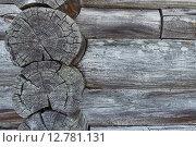Фрагмент старой бревенчатой стены. Стоковое фото, фотограф Дарья Андрианова / Фотобанк Лори