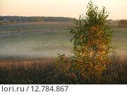 Купить «Осенний пейзаж», фото № 12784867, снято 1 октября 2007 г. (c) Морозова Татьяна / Фотобанк Лори