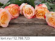 Купить «Bouquet of beautiful pink roses», фото № 12788723, снято 1 сентября 2015 г. (c) Елена Блохина / Фотобанк Лори