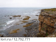Купить «Крутой скалистый берег Баренцева моря. Летний туманный день. Полуостров Рыбачий, недалеко от Мурманска.», фото № 12792771, снято 9 августа 2015 г. (c) Виктор Сагайдашин / Фотобанк Лори