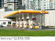 Купить «АЗС Shell», фото № 12810159, снято 29 августа 2015 г. (c) Ирина Новак / Фотобанк Лори