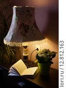 Настольная лампа и книга. Стоковое фото, фотограф Юлия Маразенко / Фотобанк Лори