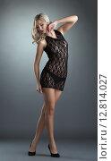Купить «Сексуальная модель позирует в кружевном неглиже», фото № 12814027, снято 28 октября 2013 г. (c) Гурьянов Андрей / Фотобанк Лори