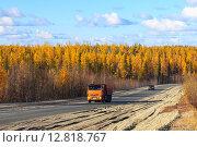 Автомобили едут по дороге среди осенней тайги. Надымский район, Ямало-Ненецкий автономный округ, фото № 12818767, снято 23 сентября 2015 г. (c) Григорий Писоцкий / Фотобанк Лори
