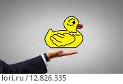 Купить «Decoy duck», фото № 12826335, снято 21 сентября 2018 г. (c) Sergey Nivens / Фотобанк Лори