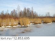 Купить «Первый лед на водоеме», эксклюзивное фото № 12853695, снято 27 декабря 2013 г. (c) Елена Коромыслова / Фотобанк Лори