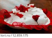 Обручальные кольца жениха и невесты лежат на специальной подушечке на столе в ЗАГСе. Стоковое фото, фотограф Игорь Низов / Фотобанк Лори
