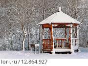 Зимний пейзаж. Беседка и мангал для шашлыков. Стоковое фото, фотограф A_ksenya / Фотобанк Лори