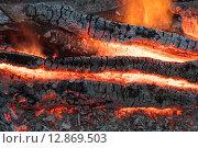 Купить «Красивый костёр с яркими раскалёнными углями», фото № 12869503, снято 3 октября 2015 г. (c) Алексей Маринченко / Фотобанк Лори