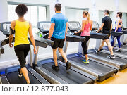 Купить «Fit people walking on treadmills», фото № 12877043, снято 19 июля 2015 г. (c) Wavebreak Media / Фотобанк Лори