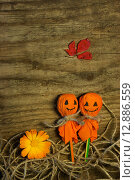 Купить «Хэллоуин», фото № 12886559, снято 14 октября 2015 г. (c) Ирина Новак / Фотобанк Лори