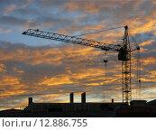 Строительный кран на фоне вечернего неба. Стоковое фото, фотограф Елена Утенкова / Фотобанк Лори