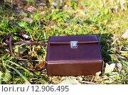 Коричневый кожаный портфель лежит на траве. Стоковое фото, фотограф Tatyana Emelina / Фотобанк Лори
