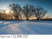Купить «Закат в заснеженном зимнем поле», фото № 12906727, снято 21 февраля 2009 г. (c) Константин Лабунский / Фотобанк Лори