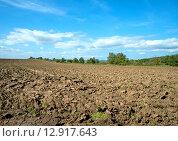 Распаханные поля. Стоковое фото, фотограф Кононенко Александр / Фотобанк Лори