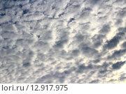 Небо закрывается тучами. Стоковое фото, фотограф Асия Абубакрова / Фотобанк Лори