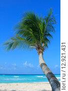 Купить «Тропический пляж», фото № 12921431, снято 5 апреля 2013 г. (c) Морозова Татьяна / Фотобанк Лори