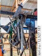 Купить «Ручной инструмент для стрижки овец», фото № 12927187, снято 13 декабря 2012 г. (c) vale_t / Фотобанк Лори