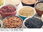 Купить «various legumes in bowls», фото № 12930163, снято 26 марта 2019 г. (c) PantherMedia / Фотобанк Лори