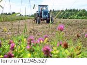 Купить «Freshly cut grass is dried on mown meadow, farm tractor. Светло синий фермерский трактор едет по выкошенному лугу, сенокос в Олонецком районе Карелии.», фото № 12945527, снято 26 июля 2006 г. (c) Владимир Григорьев / Фотобанк Лори