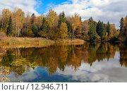 Купить «Осенний пейзаж в Московской области», фото № 12946711, снято 30 сентября 2015 г. (c) Валерий Боярский / Фотобанк Лори