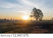 Купить «Осенний пейзаж в Тульской области», фото № 12947575, снято 24 сентября 2015 г. (c) Валерий Боярский / Фотобанк Лори