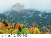 Вершина горы, осенний пейзаж, Адыгея. Стоковое фото, фотограф Станислав Самойлик / Фотобанк Лори