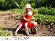 Купить «Маленькая девочка на фоне огородных грядок», фото № 12960651, снято 24 июня 2015 г. (c) Александр Мишкин / Фотобанк Лори