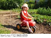 Купить «Маленькая девочка на игрушечном велосипеде играет в огороде», фото № 12960659, снято 24 июня 2015 г. (c) Александр Мишкин / Фотобанк Лори