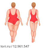 Купить «Толстая и стройная женщина в купальниках», иллюстрация № 12961547 (c) elena_a / Фотобанк Лори