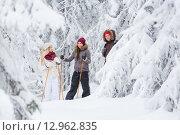 Путешественники на лыжах в заснеженном лесу. Стоковое фото, фотограф Petri Jauhiainen / Фотобанк Лори