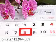 Купить «Праздник 8 марта», эксклюзивное фото № 12964039, снято 11 марта 2012 г. (c) Яна Королёва / Фотобанк Лори