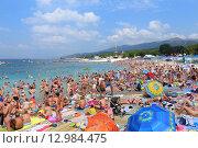 Купить «Отдыхающие на пляже поселка Кабардинка, Краснодарский край», эксклюзивное фото № 12984475, снято 5 августа 2015 г. (c) Григорий Писоцкий / Фотобанк Лори