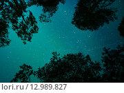 Ночное небо в Карелии. Стоковое фото, фотограф Максим Судоргин / Фотобанк Лори