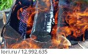 Дрова горят в костре, крупный план. Стоковое видео, видеограф FotograFF / Фотобанк Лори