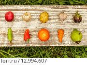 Спелые овощи на деревянной доске. Стоковое фото, фотограф Виктор Колдунов / Фотобанк Лори