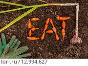 Слово EAT из моркови, чеснок и перчатки на земле. Стоковое фото, фотограф Виктор Колдунов / Фотобанк Лори