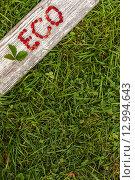 """Надпись """"ECO"""", выложенная из земляники на деревянной доске. Стоковое фото, фотограф Виктор Колдунов / Фотобанк Лори"""