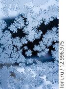 Купить «Frosty winter pattern», фото № 12996975, снято 6 февраля 2009 г. (c) ElenArt / Фотобанк Лори
