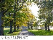 Купить «Осенний парк», фото № 12998671, снято 22 октября 2015 г. (c) Татьяна Кахилл / Фотобанк Лори