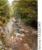 Ущелье Гуам, бурный ручей. Стоковое фото, фотограф Игорь Яковлев / Фотобанк Лори