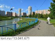 Купить «Дюссельдорфский парк. Москва», эксклюзивное фото № 13041671, снято 29 июля 2015 г. (c) lana1501 / Фотобанк Лори