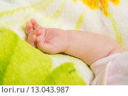 Купить «Маленькая ручка спящего малыша», фото № 13043987, снято 28 сентября 2015 г. (c) Иванов Алексей / Фотобанк Лори